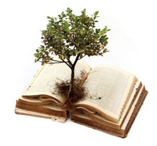 tree on top of book